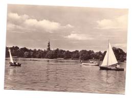 Schwanenteich 1967